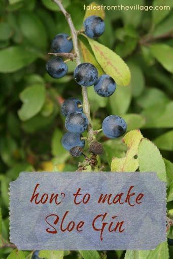 How To Make Sloe Gin >> How To Make Sloe Gin Rachael Lucas