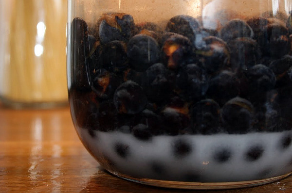 how to make sloe gin