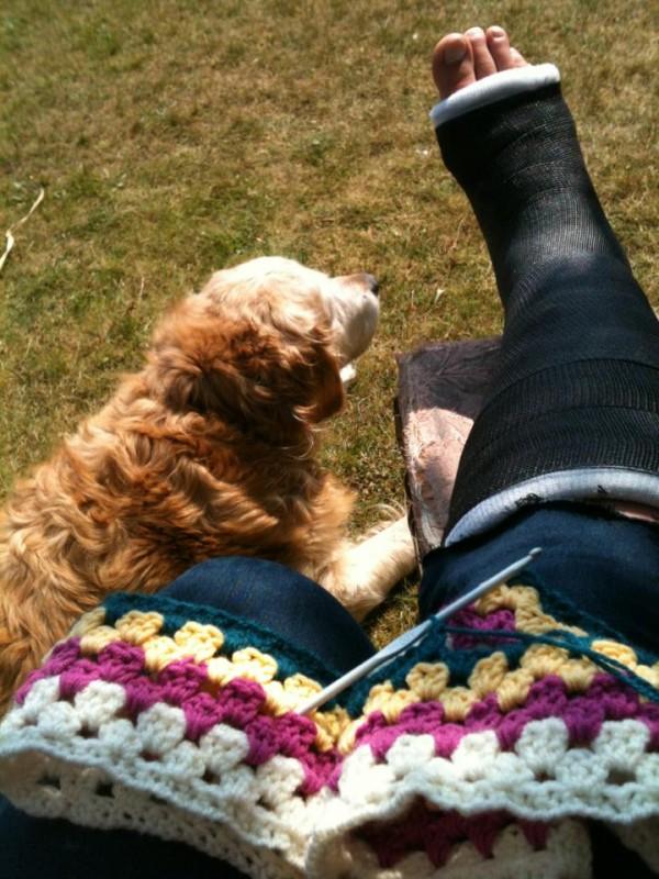 polly leg
